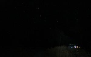 Sternzeichen ORION in Australien