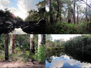 Wunderschöne Natur und Tierwelt auf unserer Rundreise 2011