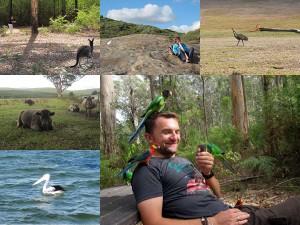 Rundreise durch West Australen - Tierwelt und Natur