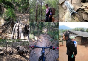 Downhill Mountainbiking in Chiang Mai Thailand