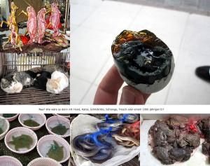 In China essen sie Hunde und Katzen
