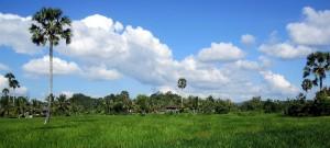 Grundstücke in Kambodscha kaufen