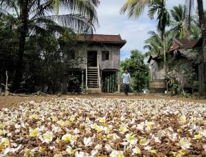 Weltreise Blog aus Kambodscha