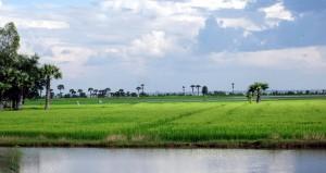 Weltreise Blog: mit dem Tuk-Tuk durch Kambodscha