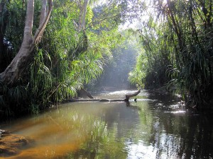 Der Perfekte Ort in Kambodscha - Weltreise Blog