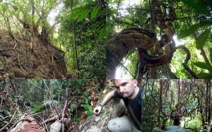 Durch den Regenwald auf Koh Chang trekking Weltreise Blog