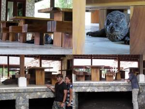 Begegnungen mit einen Komodowaran