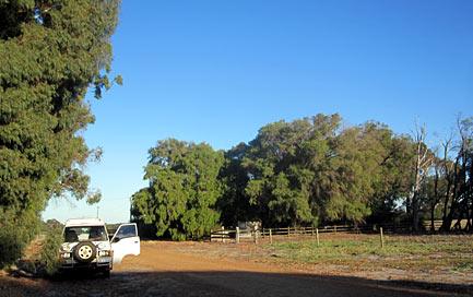 Kostenlos übernachten auf einer Farm in Australien