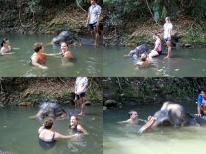 Schwimmen mit Elefanten in Thailand auf der Insel Koh Chang