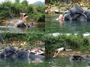 Auf der Insel Ko Chang mit den Elefanten schwimmen