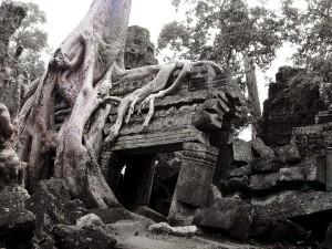 Tomb Rider Angelina Jolie Tempel Ta Prohm
